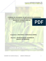 apuntesanatomiayfisiologiaaniaml2012-2