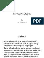 Atresia Esofagus