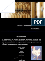 avesdepostura-101201135422-phpapp02.ppt