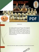 INSUMOS ALIMENTICIOS DE AVES.pptx