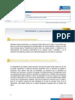 estrategia2.pdf