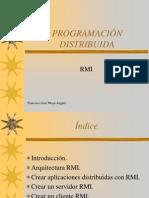 RMI01