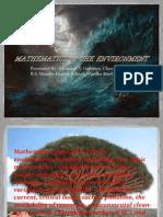 Mathematics & Environment