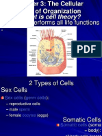 Cell Level of Organizationedit