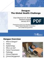 117 Dengue the Global Health Challenge FINAL
