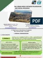 LQ Banica Muntele ResilientCities 2013 Final3
