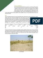 project report on economic
