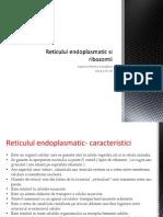 Reticulul Endoplasmatic Si Ribozomii