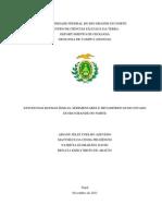 Trabalho Final - Estudo regional da geologia do RN