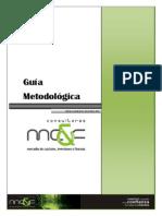Criterios_Metodologicos