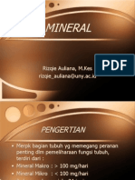 Ilmu Gizi Mineral