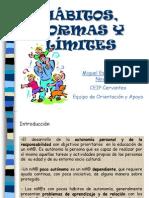 habitosnormaslimitesnoviembre-101123071819-phpapp01