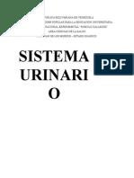 APARATO URINARIO