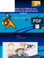 Introducere in boli profesionale.ppt