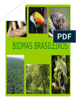 biomas brasileiros 2010