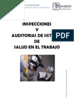 Módulo Vi -Inspecciones y Auditorias de Sistemas de Salud en El Trabajo[1]
