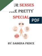 special senses project