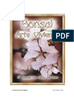 Bonsai, Arte Viviente IV