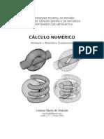 Cálculo numérico