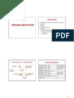 23 Virusni Hepatitisi VMS