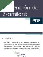 Obtención de Β-Amilasa