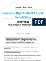 Chapter 20 ETC and Oxidative Phosph