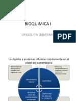 11.Lípidos y Membranas Difun