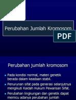 GT 11. Perubahan Jumlah Kromosom