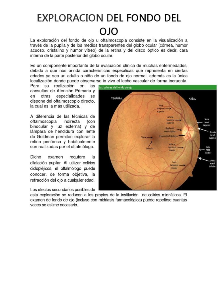 13570233ee Exploracion Del Fondo Del Ojo