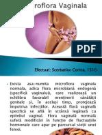 Microflora Vaginala