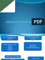 Tema 2 Aparato Respiratorio