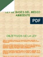 Presentacion Ley 19300