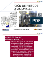 Sso - 300 Prevencion de Riesgos Ocupacionales