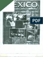 México Problemas Sociales, Políticos y Ecónimocos (2)