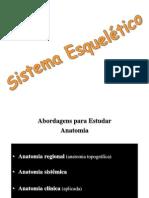 A01. Introdução à Anatomia e Sistema Esquelético [Prof. Leda]