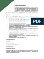 desarrollo sostenible.docx