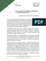 Declaração Sobre a Proteção e Promoção Da Diversidade Na Era Digital