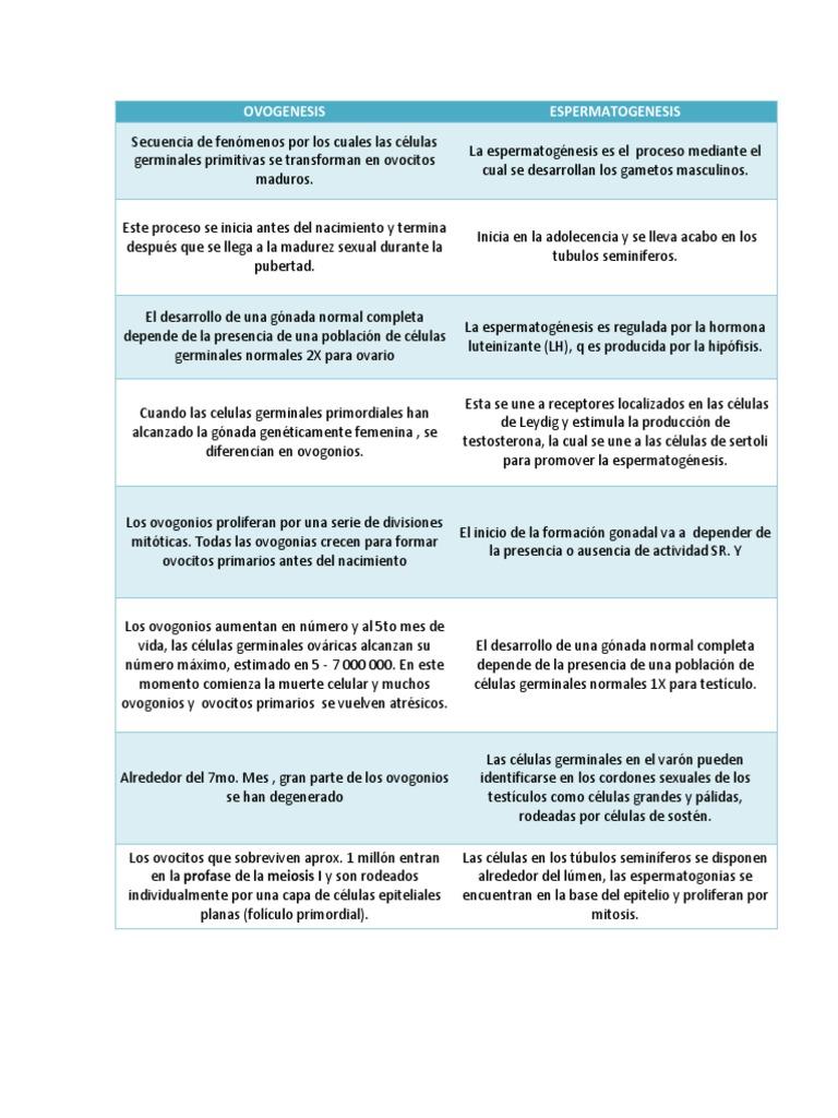 Cuadro Comparativo Entre Ovogenesis Y Espermatogenesis