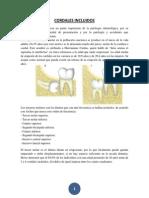 CORDALES INCLUIDOS.docx