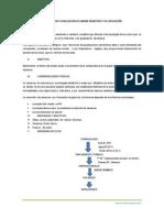 Elaboracion y Evaluacion de Jarabe Iinvertido y Su Aplicación