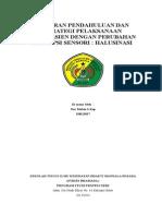 LP Dan SP Halusinasi 2