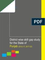Punjab Sg Report