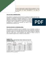 demanda real (2).doc