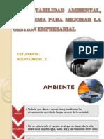 contabilidad ambiental
