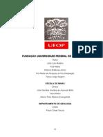 DISSERTAÇÃO_EvoluçãoTectonossedimentarBacia.pdf