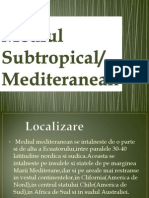 Mediul Subtropical