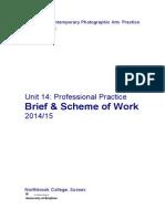 professional practice  brief 14-15