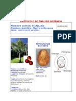 Protocolo de Análisis Botánicoaguaje
