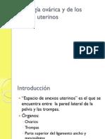 Patologia Ovarica y de Los Anexos Uterinos