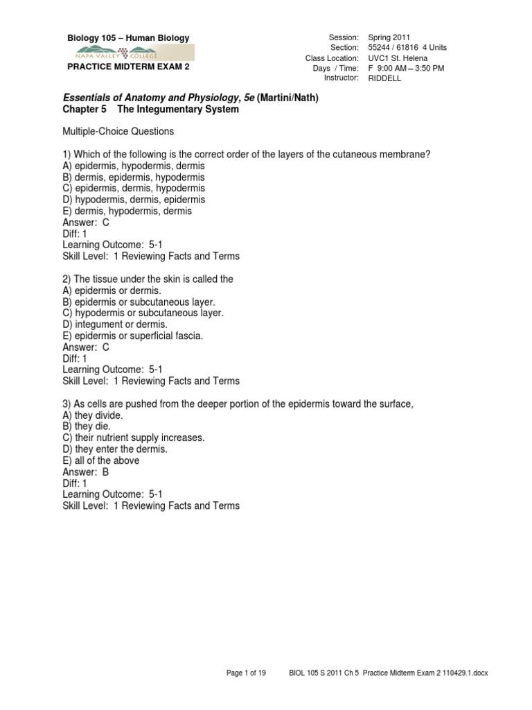 anp2001 skin quiz.pdf | Skin | Epidermis